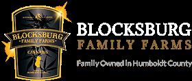 blocksburg_logo-1