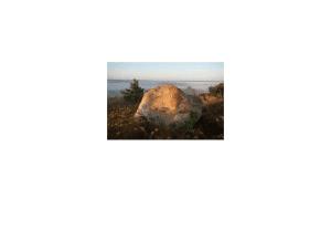 Altar Rock Capital