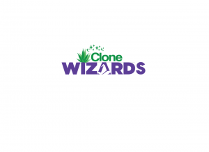 Clone wizards