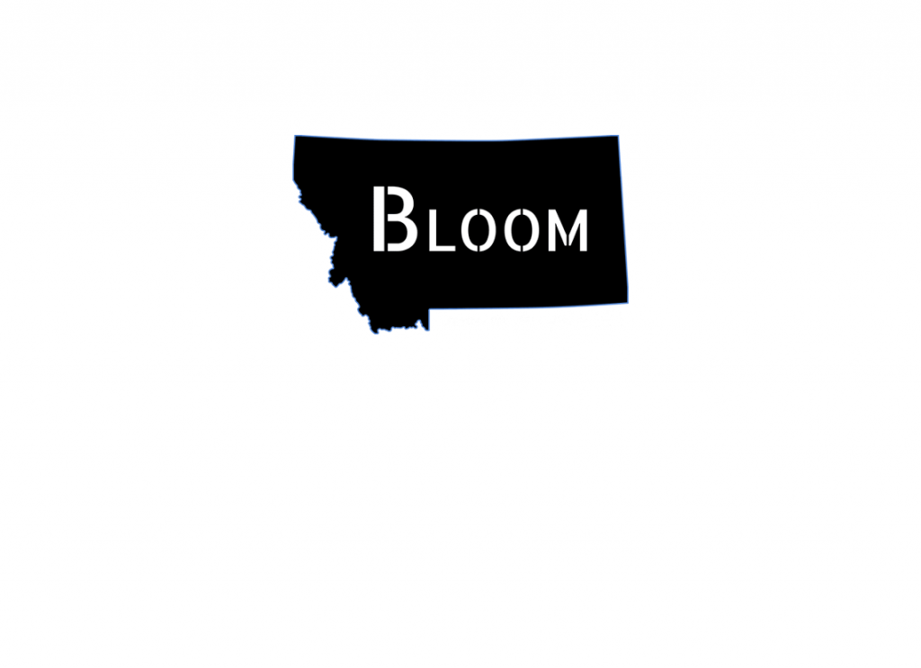 Bloom-Logo-New-update