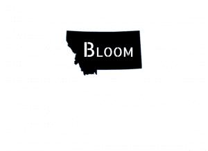 Bloom-Logo-New-update