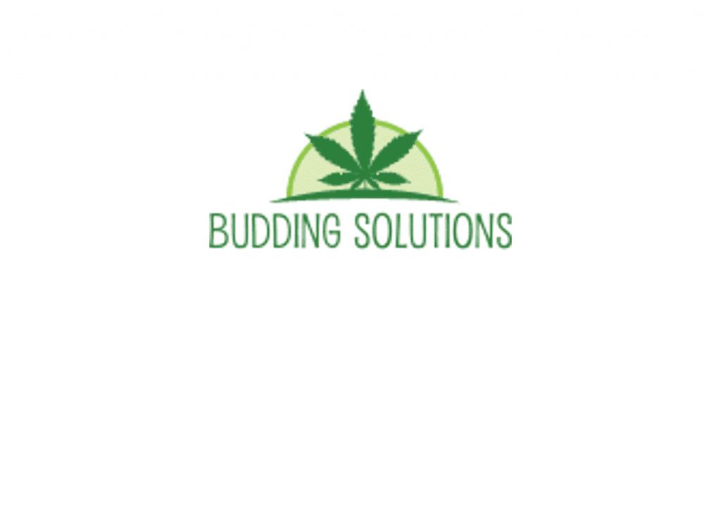Budding solutions