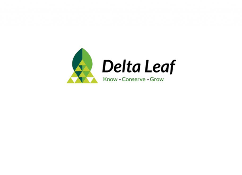 Delta Leaf