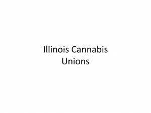 Illinois Cannabis Unions