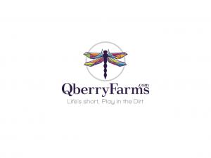 Qberry Farms